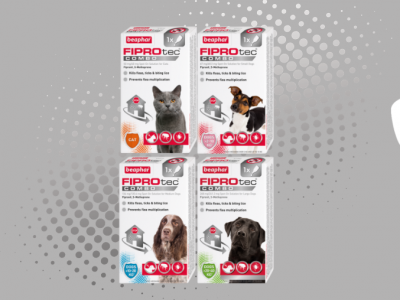 How to kill fleas with Beaphar FIPROtec® COMBO