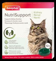Nutrisupport gato renal