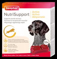 Nutrisupport perro activo