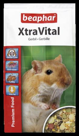 XtraVital Gerbo 500g