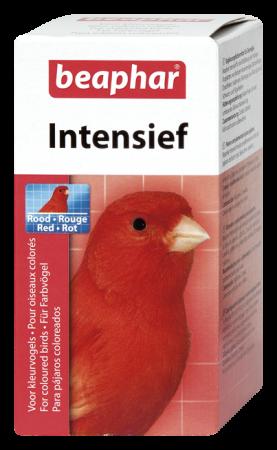 Rojo Intensivo 50g