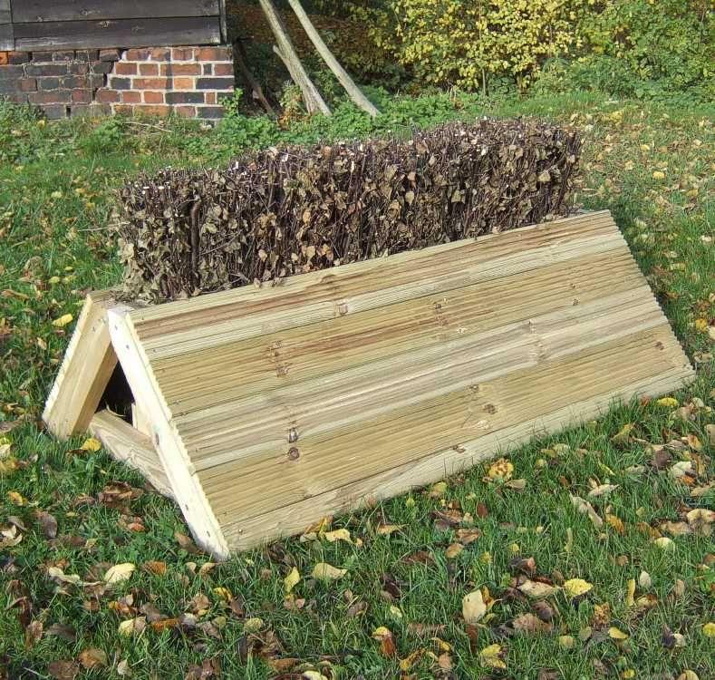 Hedgehog Pyramid Cross Country Fence