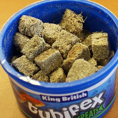 King British Tubifex Fish Treat open tub
