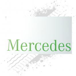 Mercedes White/Green Mudflaps (Pair)